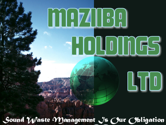 Maziiba Holdings Ltd